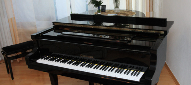 Klaviervorspiel Hauskonzert 2016